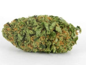 Buy Northern Lights Marijuana Online UK
